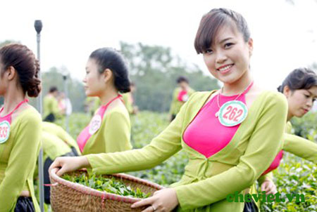 Nhãn hiệu tập thể chè Thái Nguyên