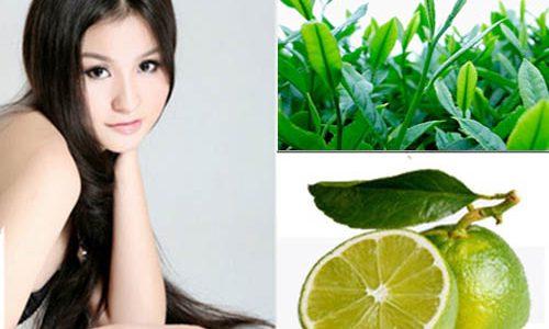 Cách chữa rụng tóc bằng trà Thái Nguyên