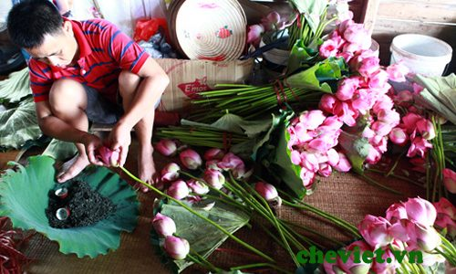 Nghệ thuật thưởng trà của người Hà Nội