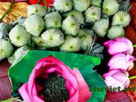 Chè Minh Cường cung cấp chè ướp bông sen Tây Hồ chất lượng cao