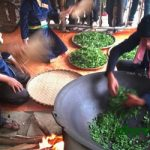 Lấy hương trà Thái Nguyên là công đoạn quan trọng của quá trình sao chè.