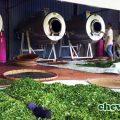 sản xuất chè Thái Nguyên sạch, an toàn