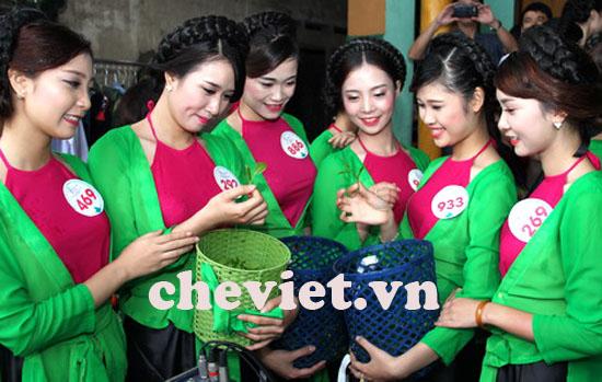 Chi Tiền tỷ phát triển thương hiệu chè Thái Nguyên
