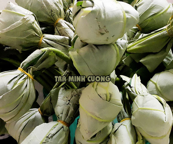 Trà ướp trong bông hoa sen còn có tên là trà quả đấm
