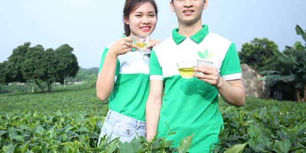 Trà Thái Nguyên ngon vì sao