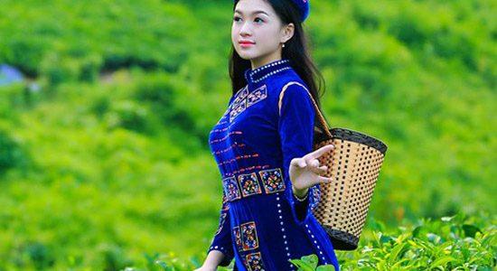 Trà Thái Nguyên nổi tiếng cỡ nào