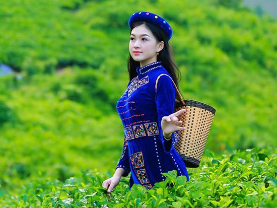 Trà Thái Nguyên nổi tiếng