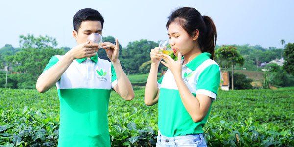 Tuyệt kỹ pha trà Thái Nguyên ngon