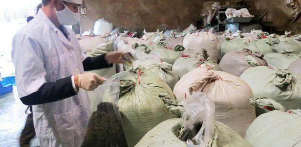 Các mẫu chè Thái Nguyên không có chất bẩn