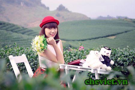 Đại lý Chè Thái Nguyên ở tại Bắc Ninh