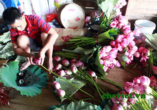 Nghệ thuật thưởng trà của người Hà Nội, Nghệ thuật thưởng trà của người Hà Nội
