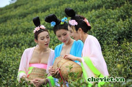 Thiếu nữ dùng những chiếc giỏ tre đựng trà