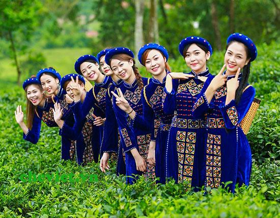 Giới thiệu về Trà Thái Nguyên