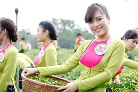 Trà Thái Nguyên trong đời sống người Việt
