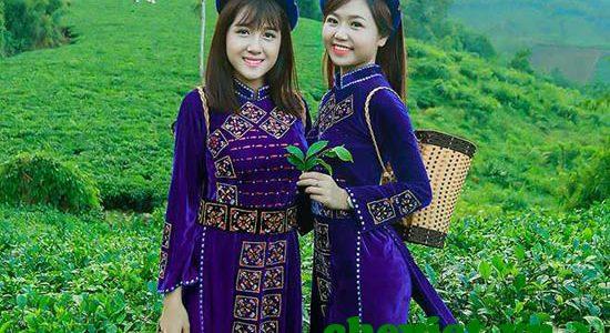 Vì sao chè Thái Nguyên ngon nhất thế giới