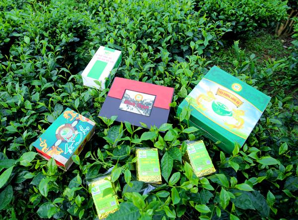 Các sản phẩm trà bắc thái nguyên đặc sản