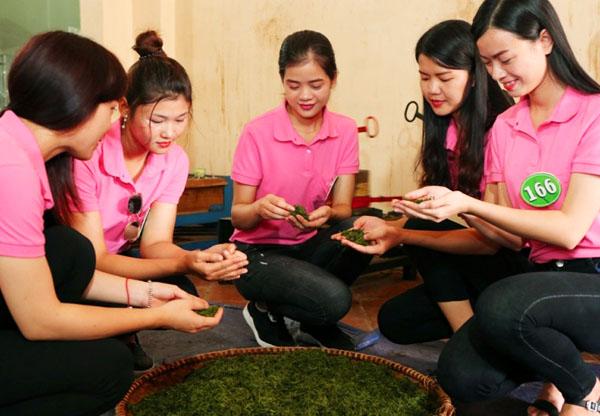 Người đẹp xứ trà trải nghiệm làm chè Thái Nguyên