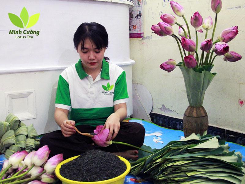 Trà sen Minh Cường làm cả chục ngàn bông trà ướp sen tươi mỗi mùa sen