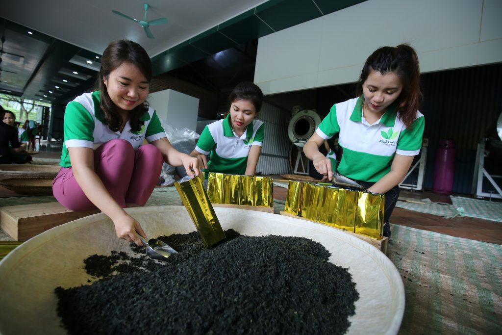 Trà Minh Cường đóng gói khi xuất khẩu
