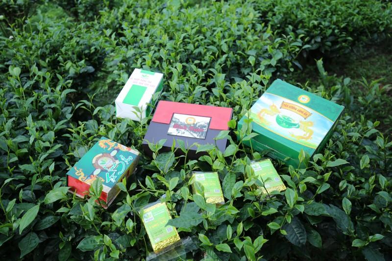 Thương hiệu trà Minh Cường được định vị ở phân khúc cao cấp, trà sạch, trà an toàn.