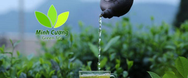 Nghiên cứu mới về lợi ích của trà Thái Nguyên